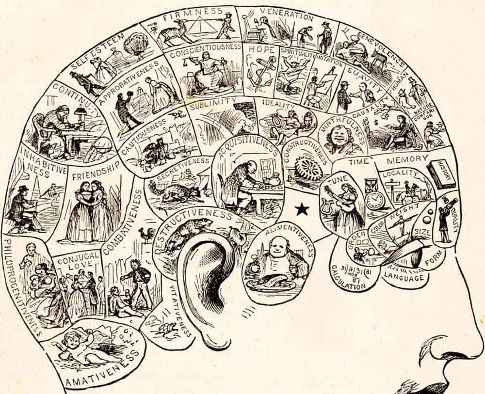 Phrenology Chart of the Faculties
